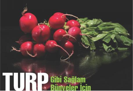 Photo of Turp Gibi Sağlam Bünyeler
