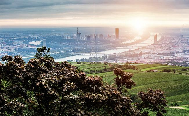 Photo of Merzifonlunun Çadırını Kurduğu Kahlenberg Tepesinden Viyana Nasıl Görünür?