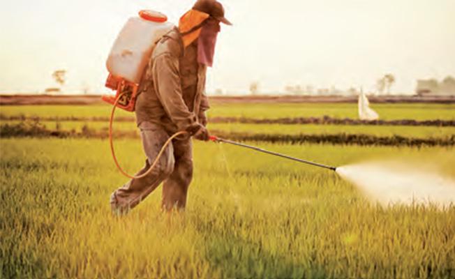Photo of Pestisite Dikkat Edin Sağlığınızdan Olmayın!