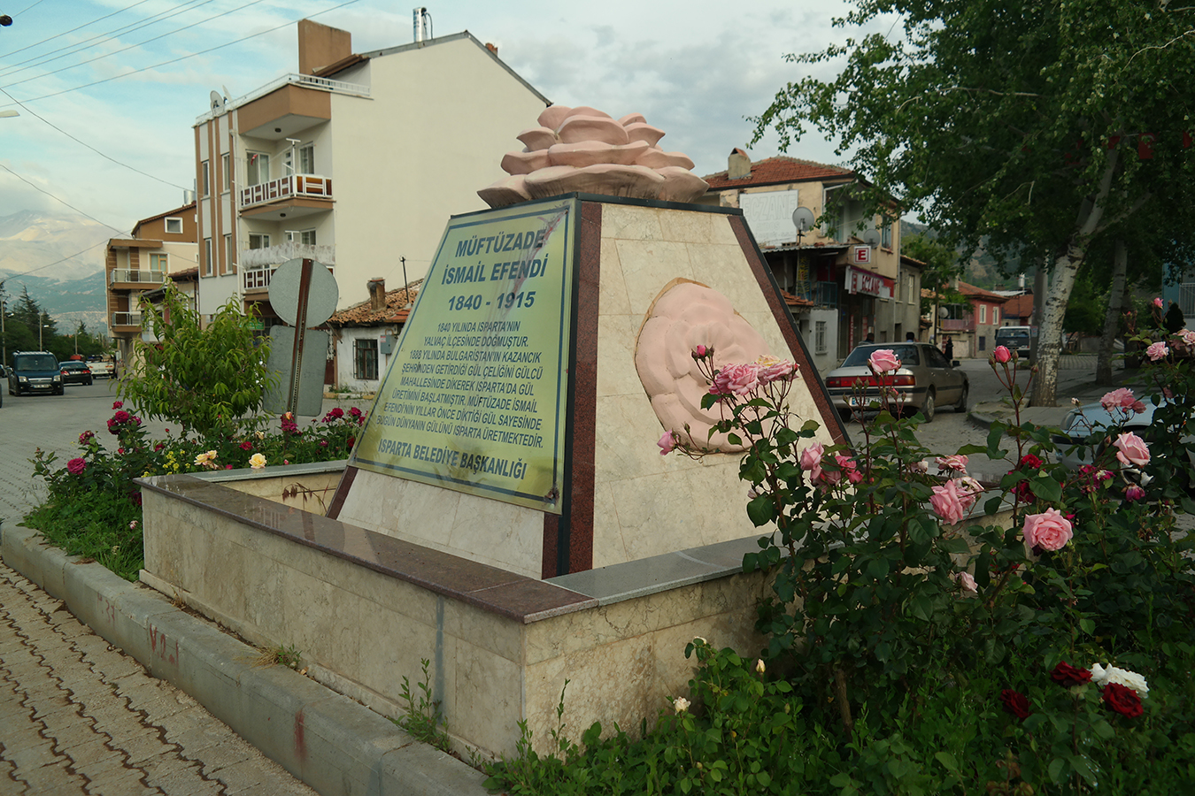 Photo of Gülün Geleceği