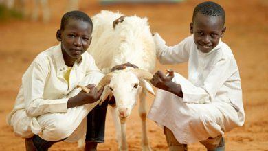 Photo of Afrika'da İlk Kurban Bayramı