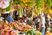 Photo of Kıtanın Doğal Mutfağı