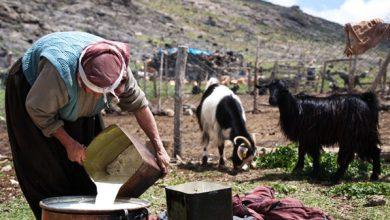 Photo of Yörük Kadını