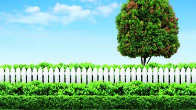 Bahçe kurmak