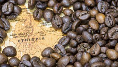 Photo of Kahve Afrika'dan Gelir!